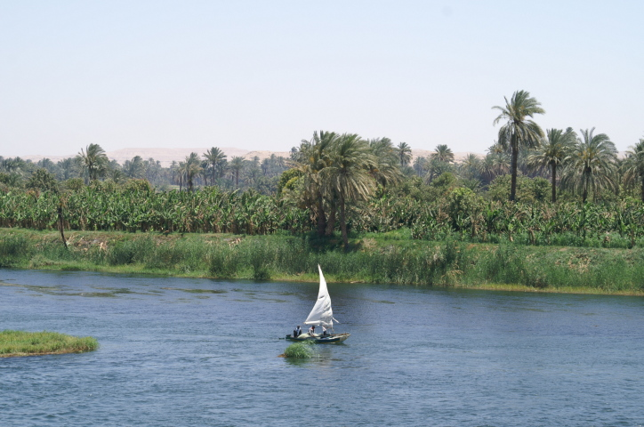 egypte avril 2009 145